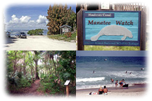Soft Adventures in Titusville's National Refuge & Seashore
